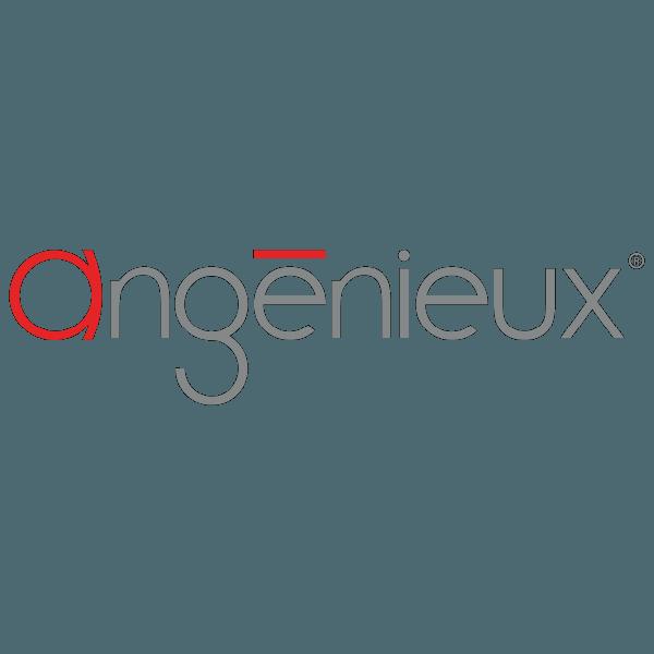 updateAngenieux_Logo-8